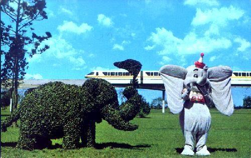 dumbo topiary.jpg