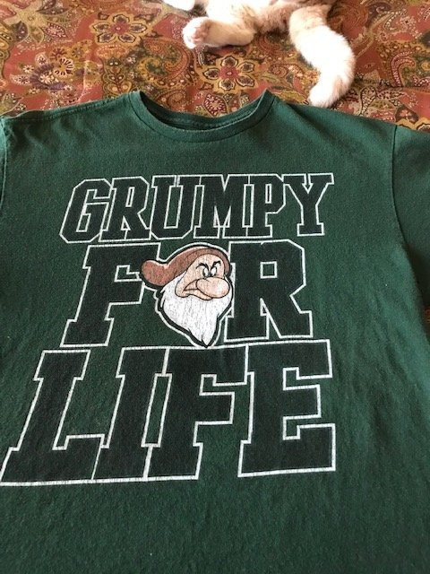 Grumpy shirt 1.jpg
