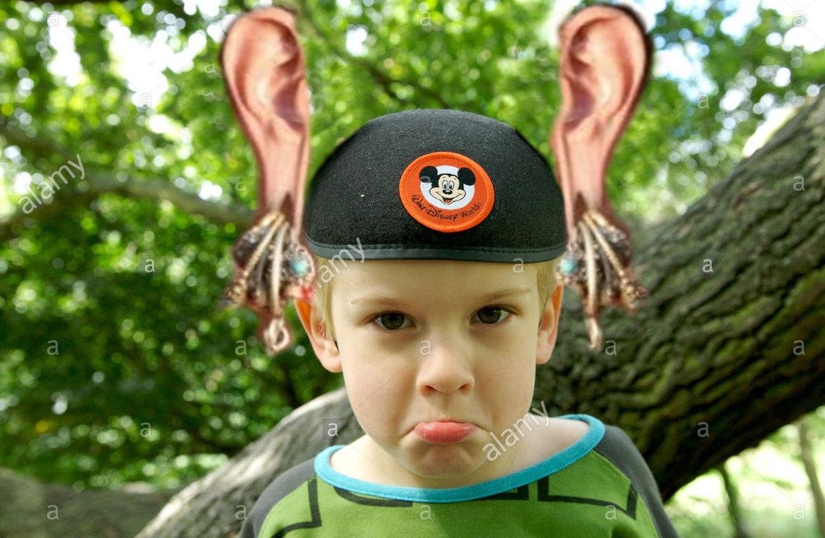 mickey ears.jpg