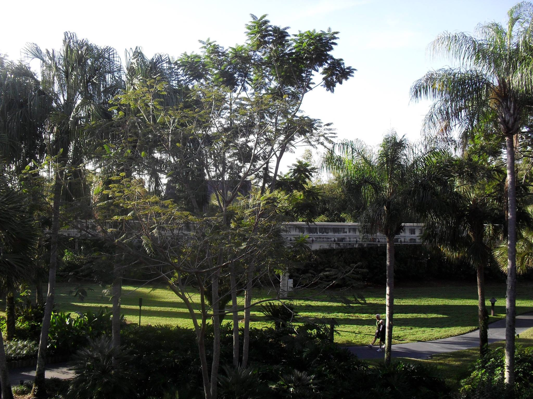 Morning View of the Monorail area of the Polynesian(2011)